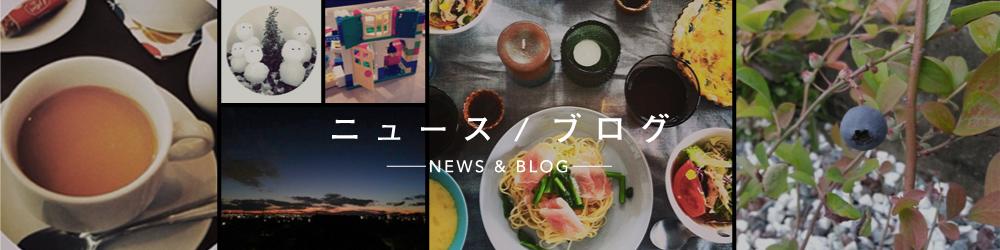 ニュース/ブログ